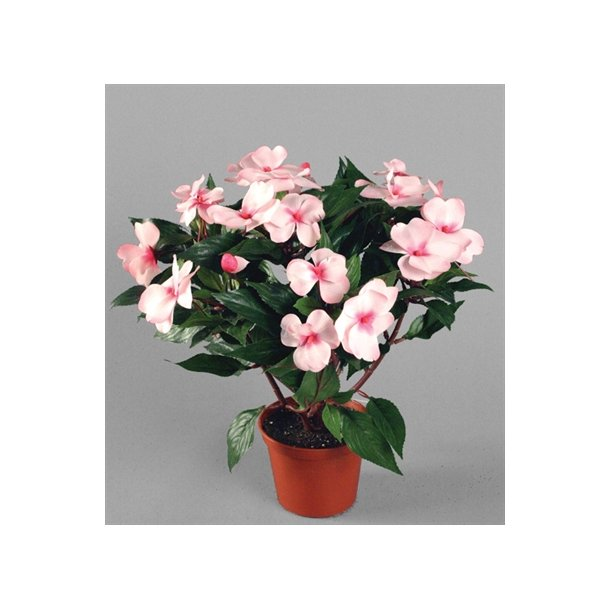 Kunstig flittiglise rosa - H: 31 cm